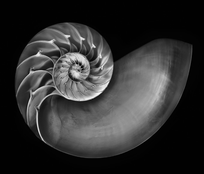 how to create stunning black and white photos in photoshop