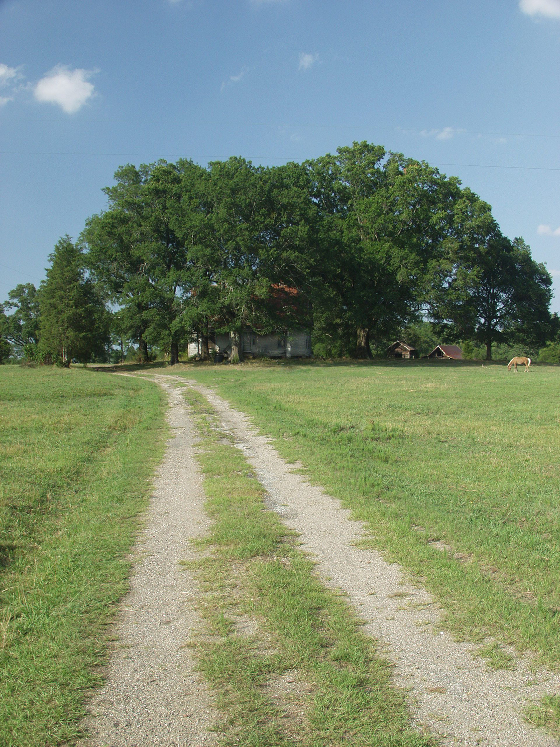 old home place with long drive author kelly landr landrum
