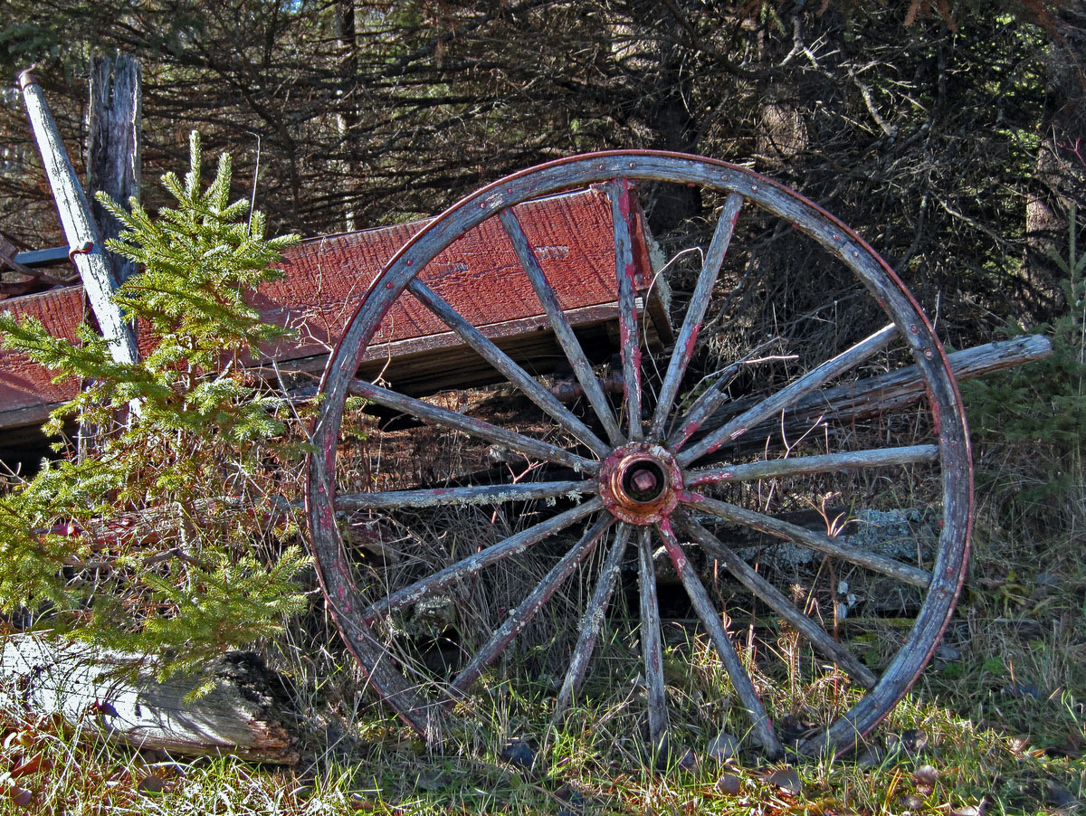 old red wooden wagon author pluskwik paul