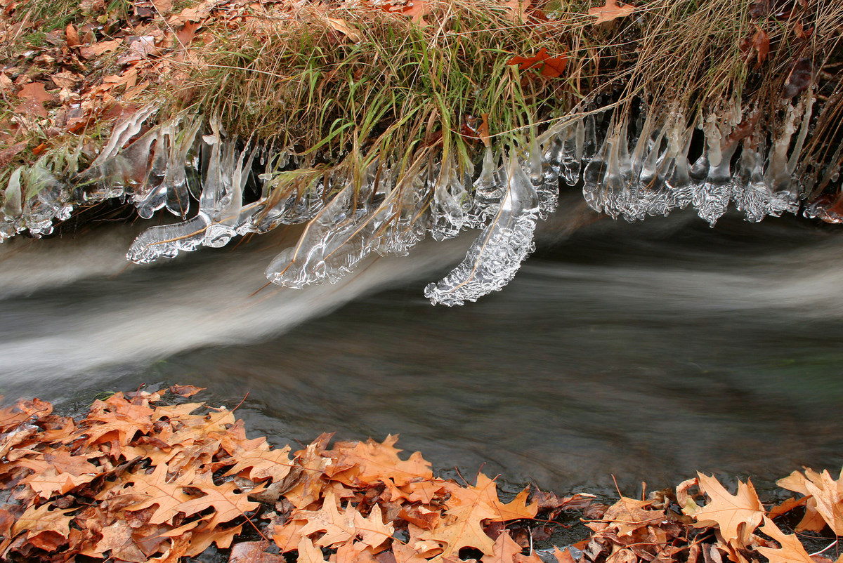 ice formations along small stream author pluskwik paul