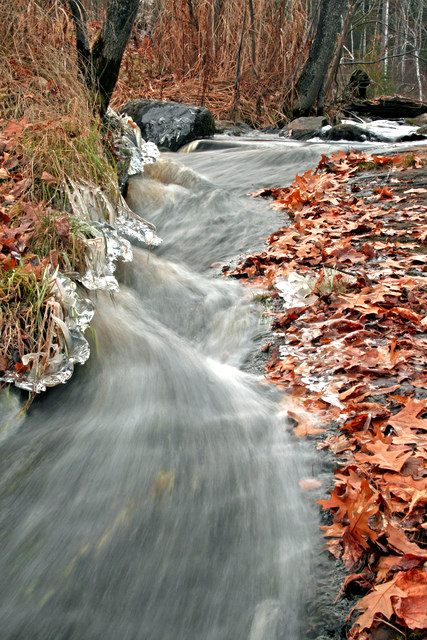 late fall view of small stream author pluskwik pa paul