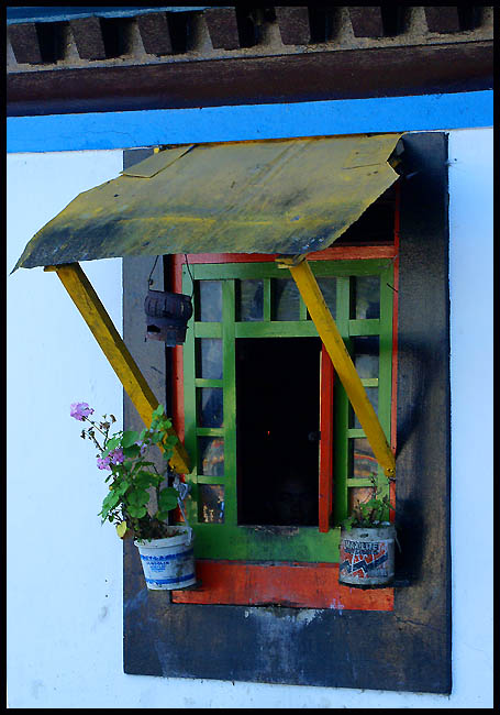 window garden in gantok india author downs jim