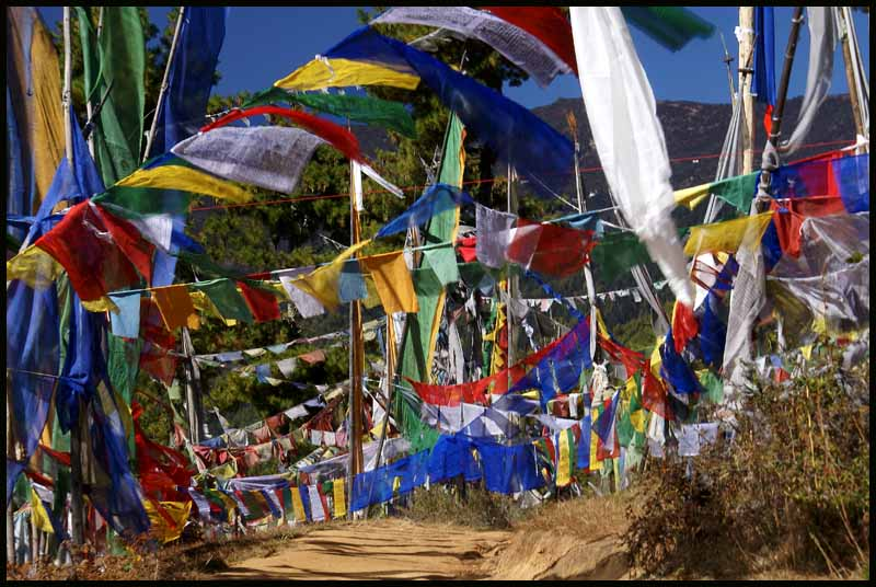 dance of the prayer flags author downs jim