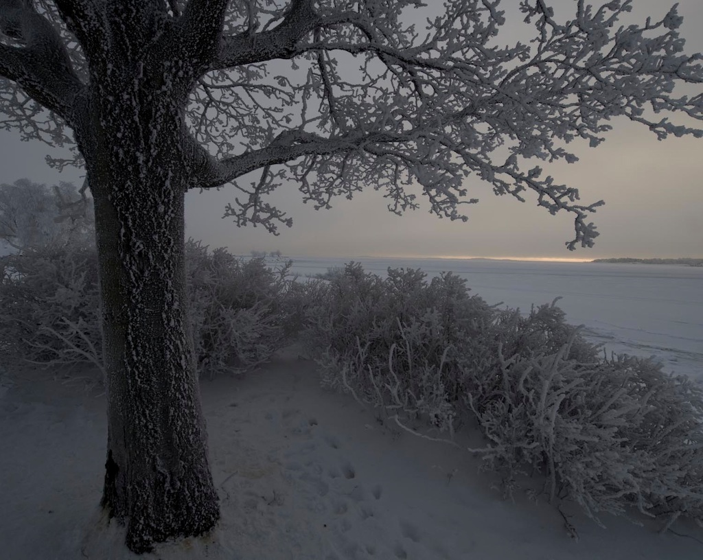 frosty sea view author soini hannu