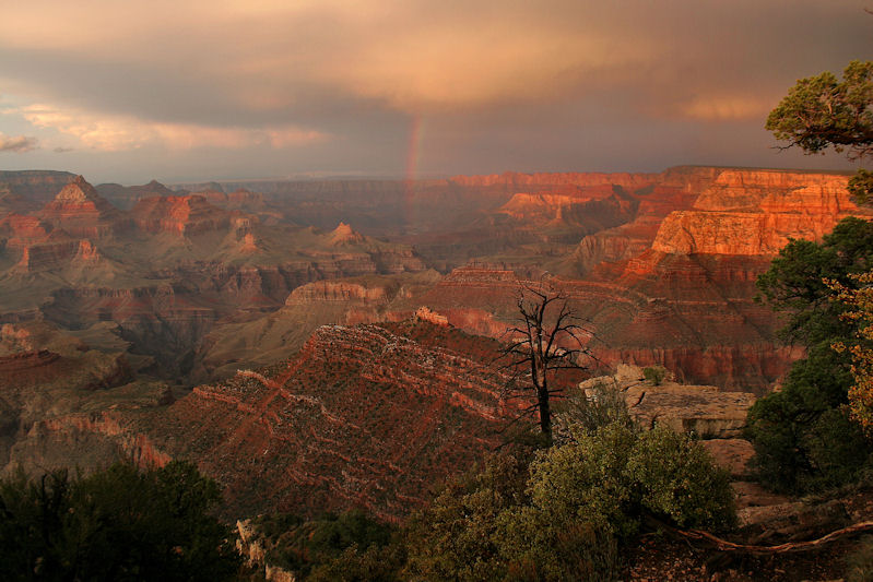 after a storm in the grand canyon author cavan da david