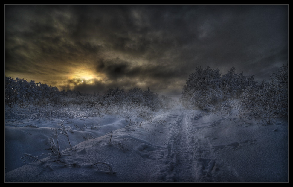 it s so cold author mikhaylov andrey