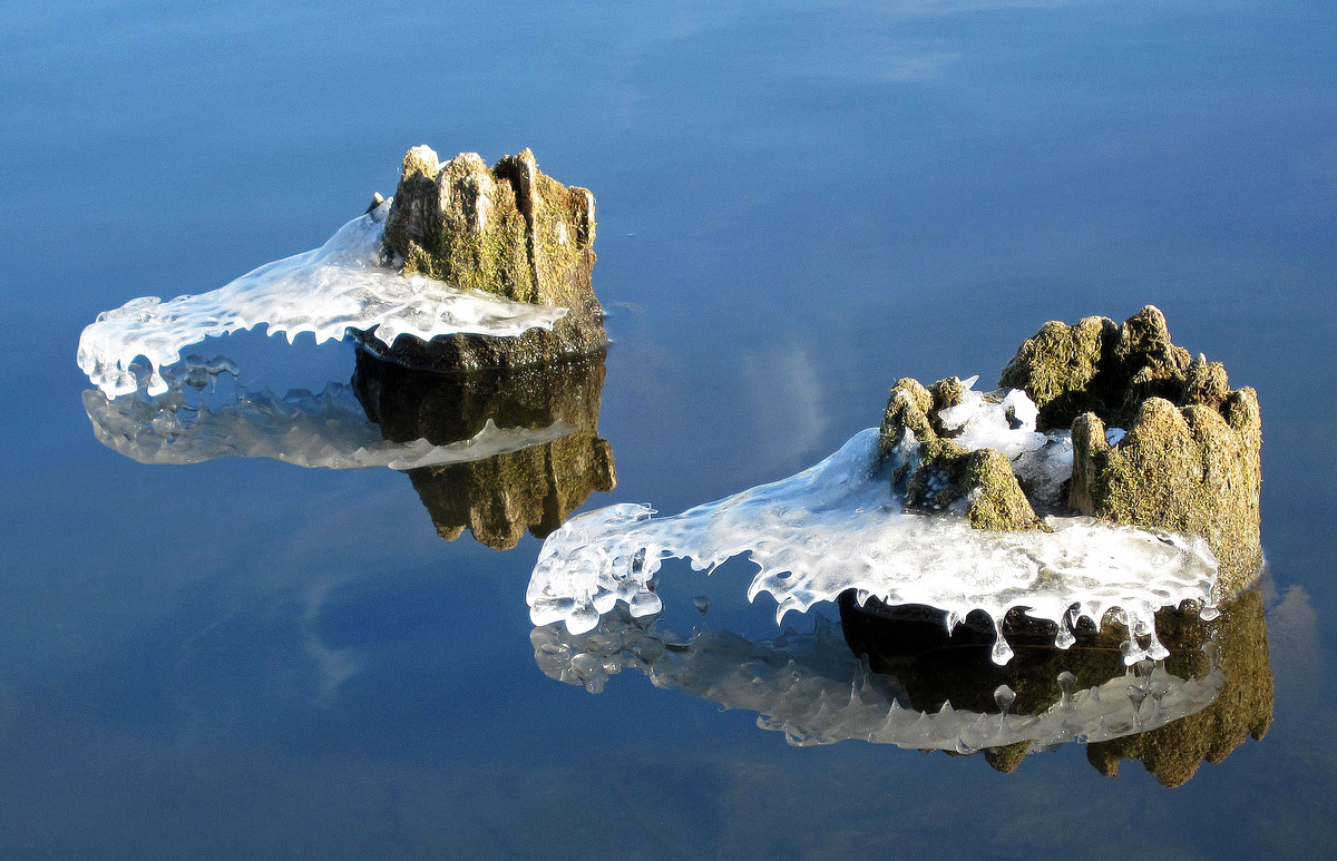 alligator head ice formations author pluskwik pa paul