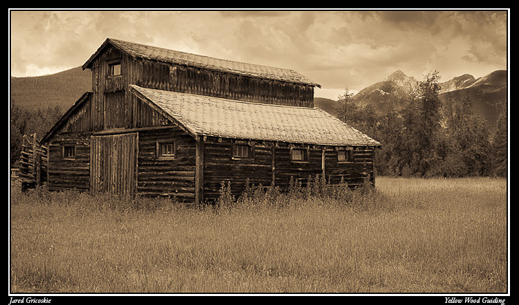 betty dick barn sepia author gricoskie jared