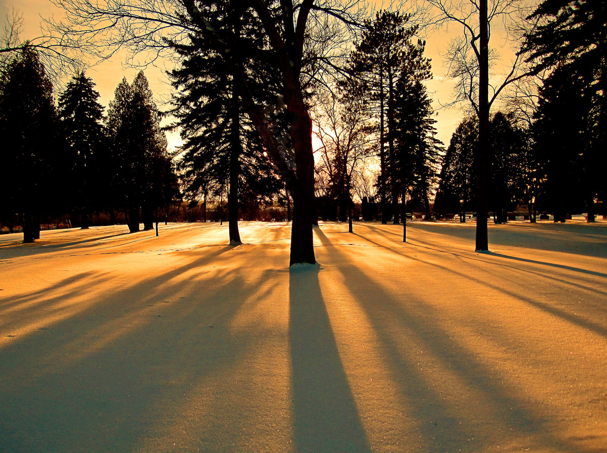 winter sunset with long shadows author pluskwik p paul
