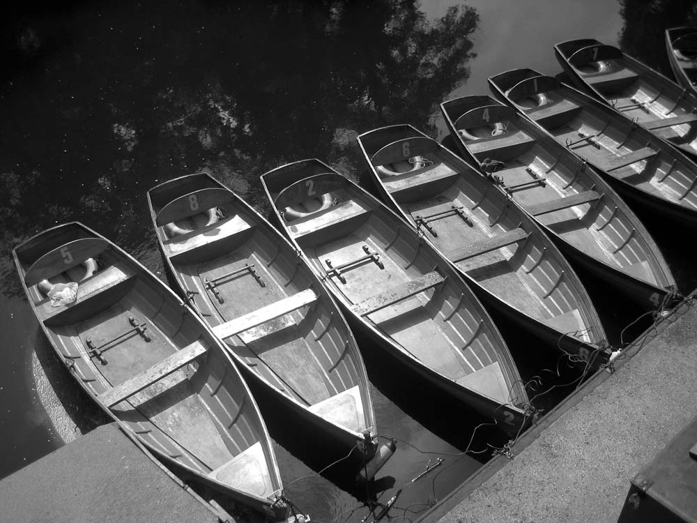 rowboats england author miller gary