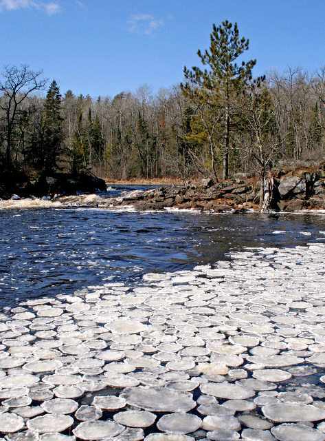 ice lily pads on the vermilion river author plusk pluskwik paul
