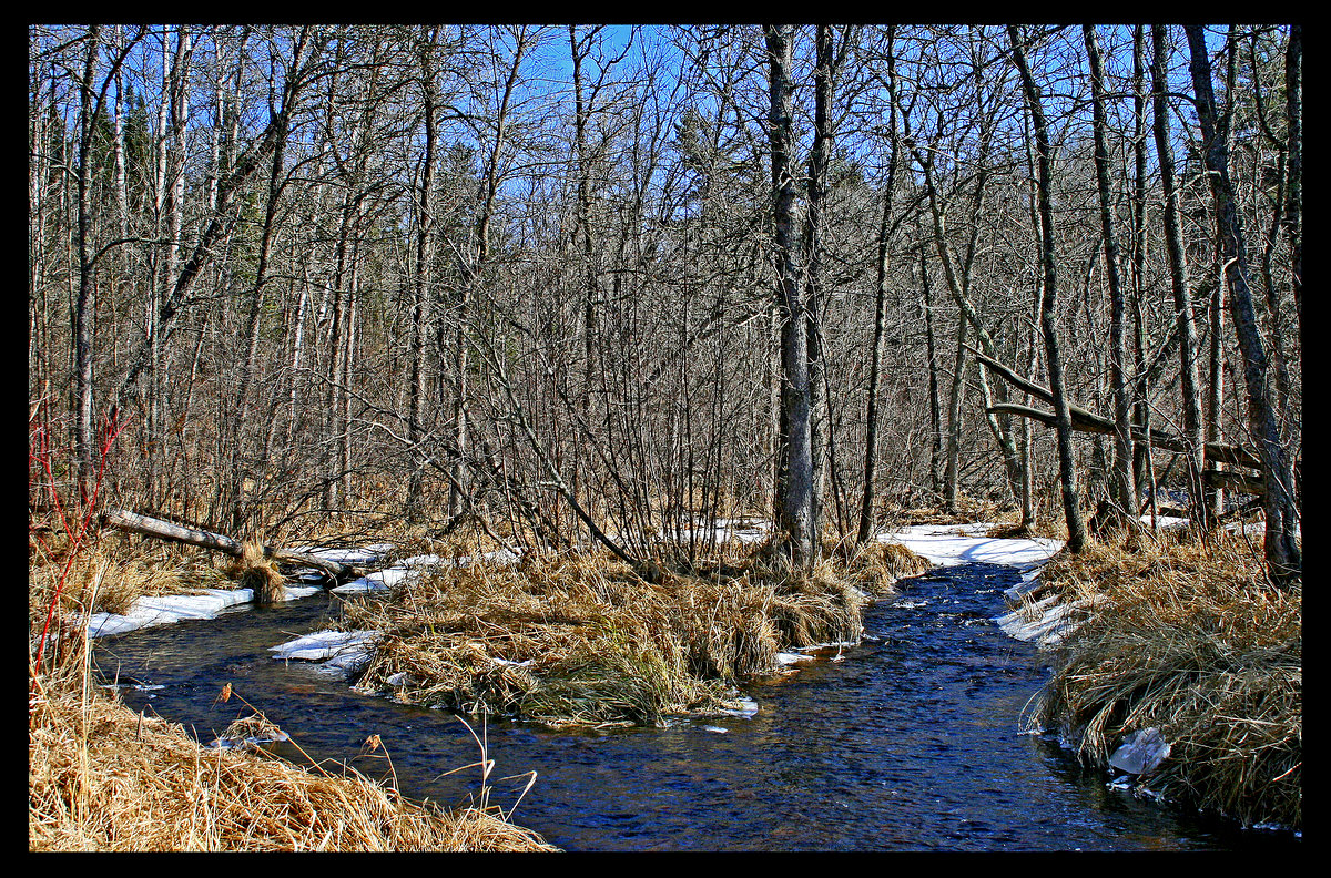 fork in the river during spring thaw author p pluskwik paul