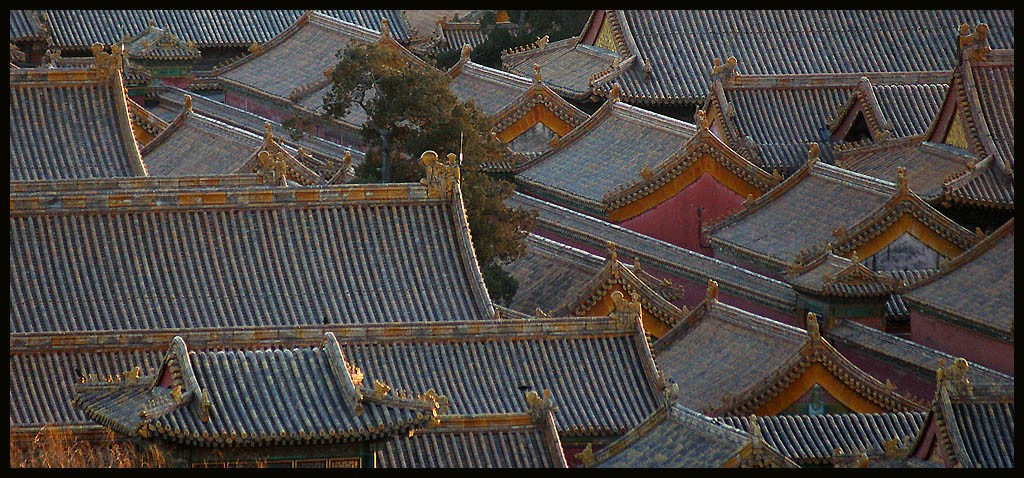 forbidden city rooftops view large author downs jim
