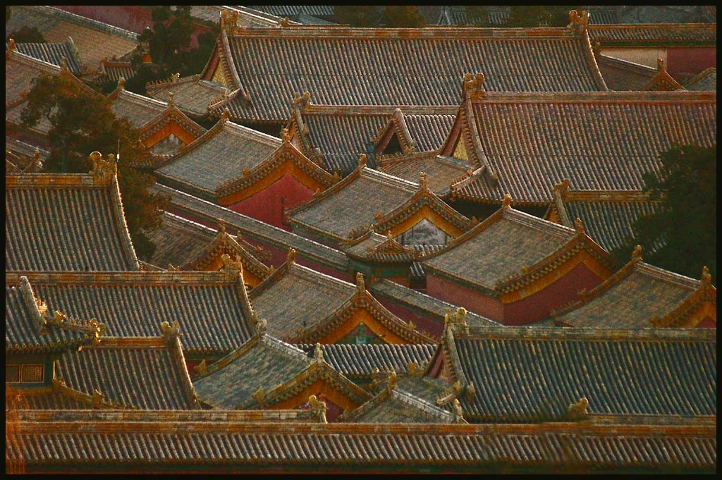 high density rooftops in the forbidden city autho downs jim