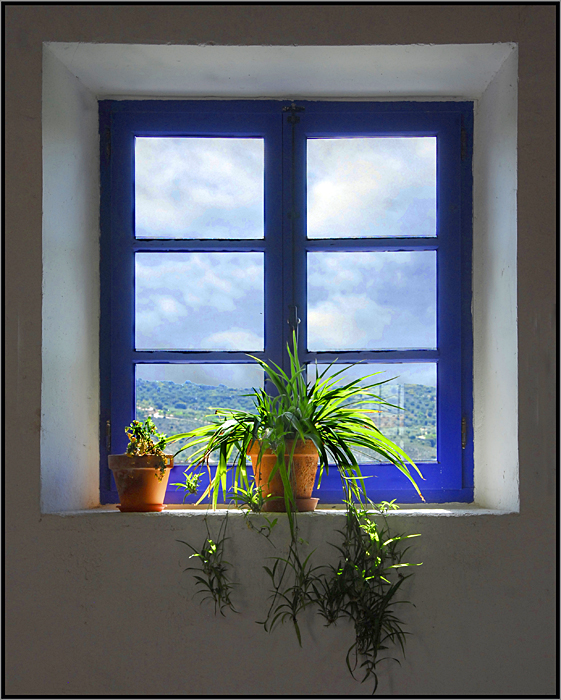 window author triguez luis