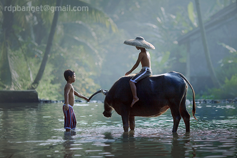 morning in the village author prakarsa rarindra