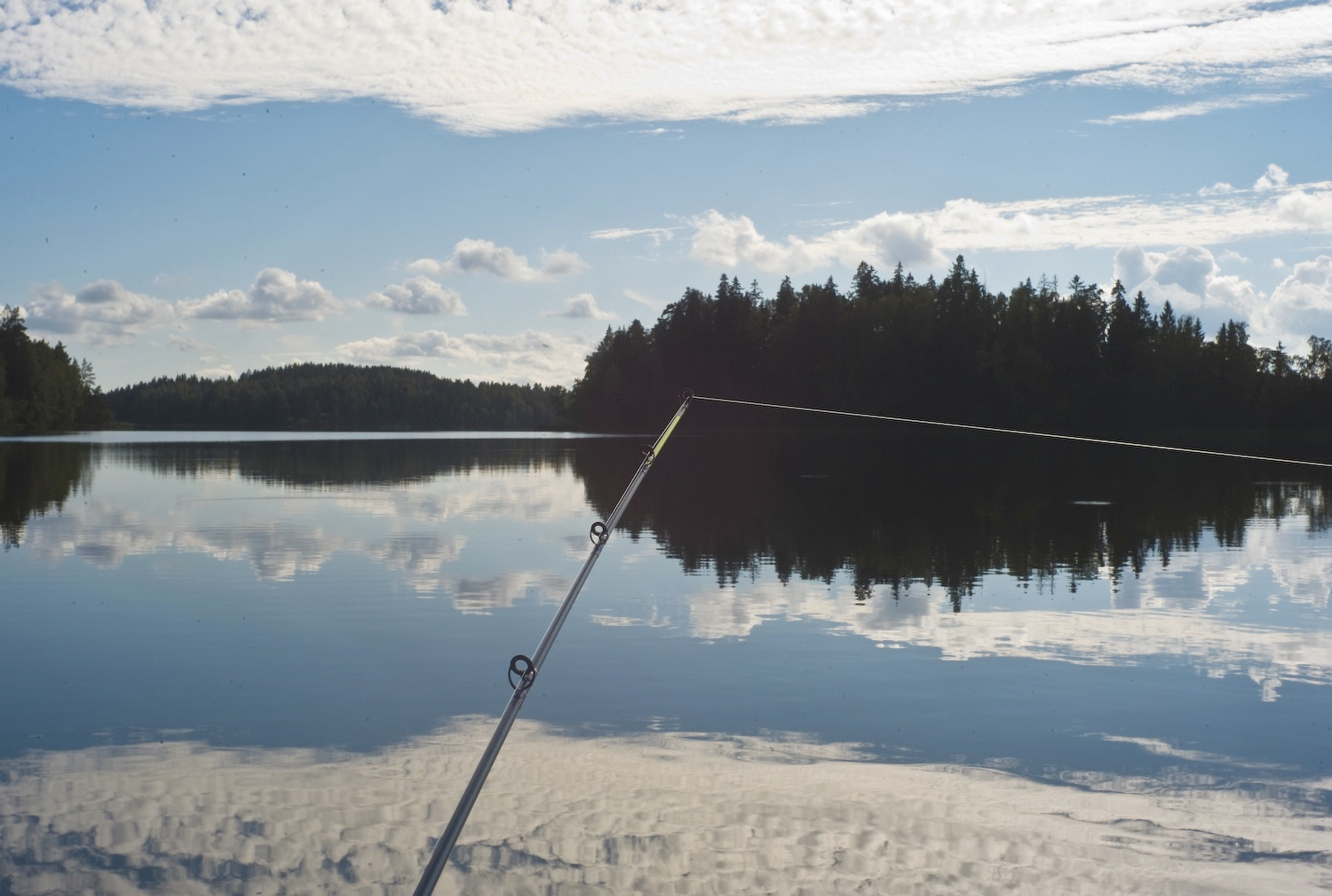 angler s view author soini hannu