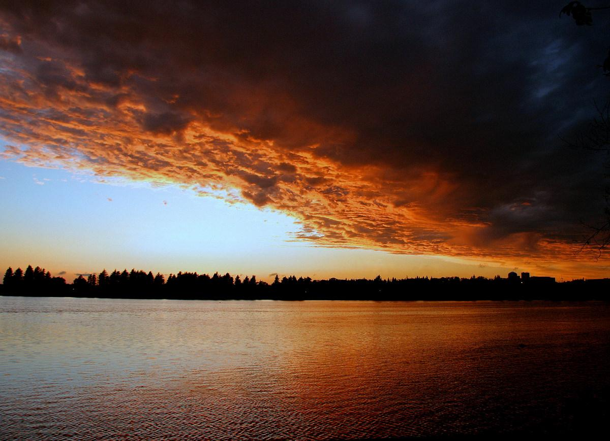 sunset after the storm author pluskwik paul