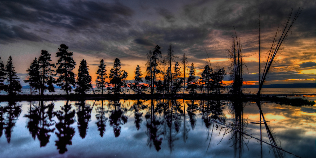 ethereal sunset author scherer kevin