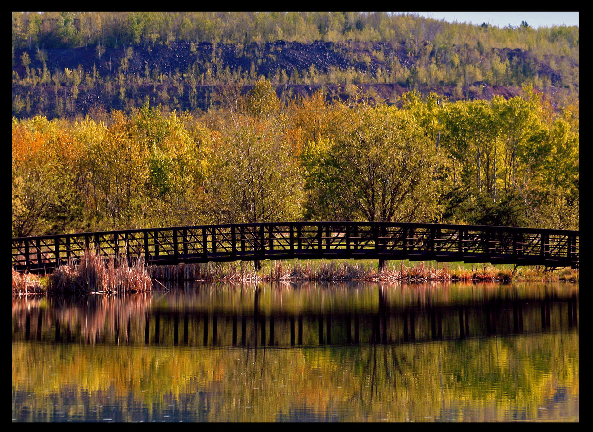 the start of fall color in minnesota author plus pluskwik paul