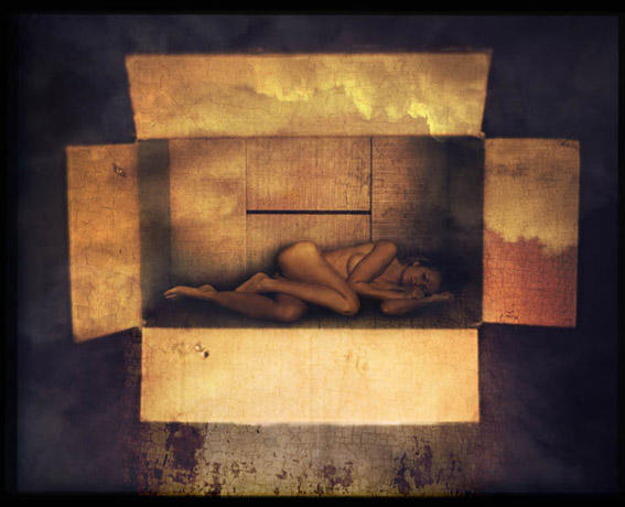 girl in a box author hoile lasse