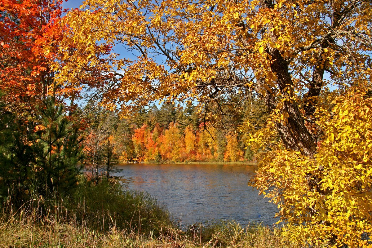fall along the pike river author pluskwik paul
