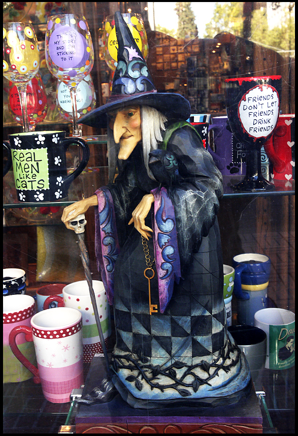 do real witches prefer black cats window display f siegel honolulu gerry