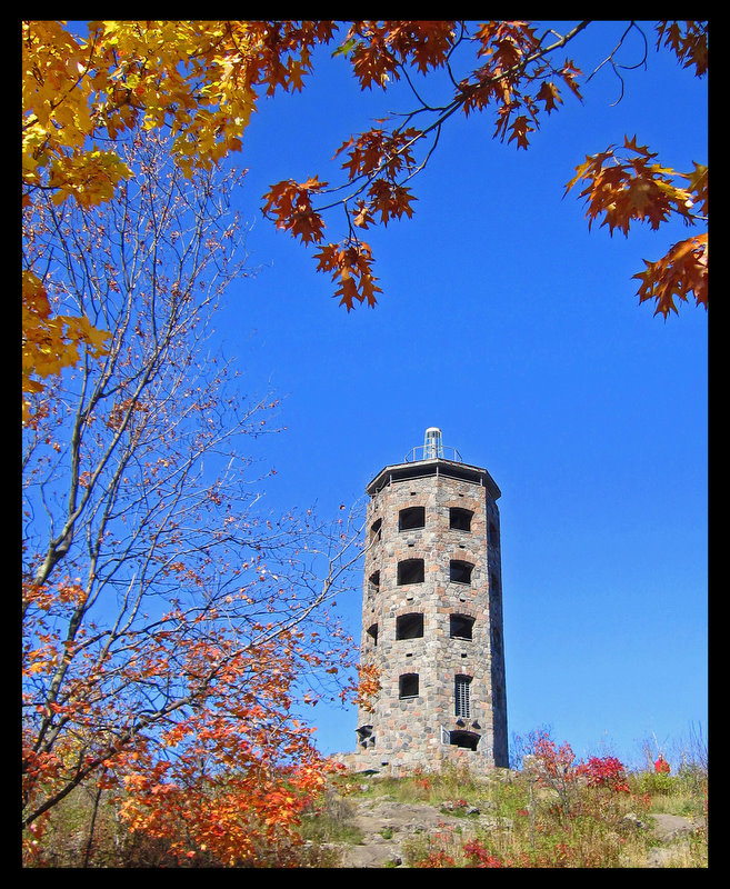 fall view of enger tower author pluskwik paul