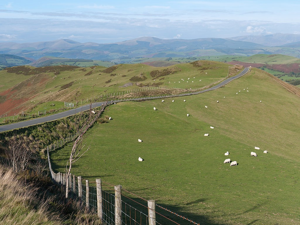 mountain road from machynlleth to llanidloes auth hickie melbourne derbyshire uk simon