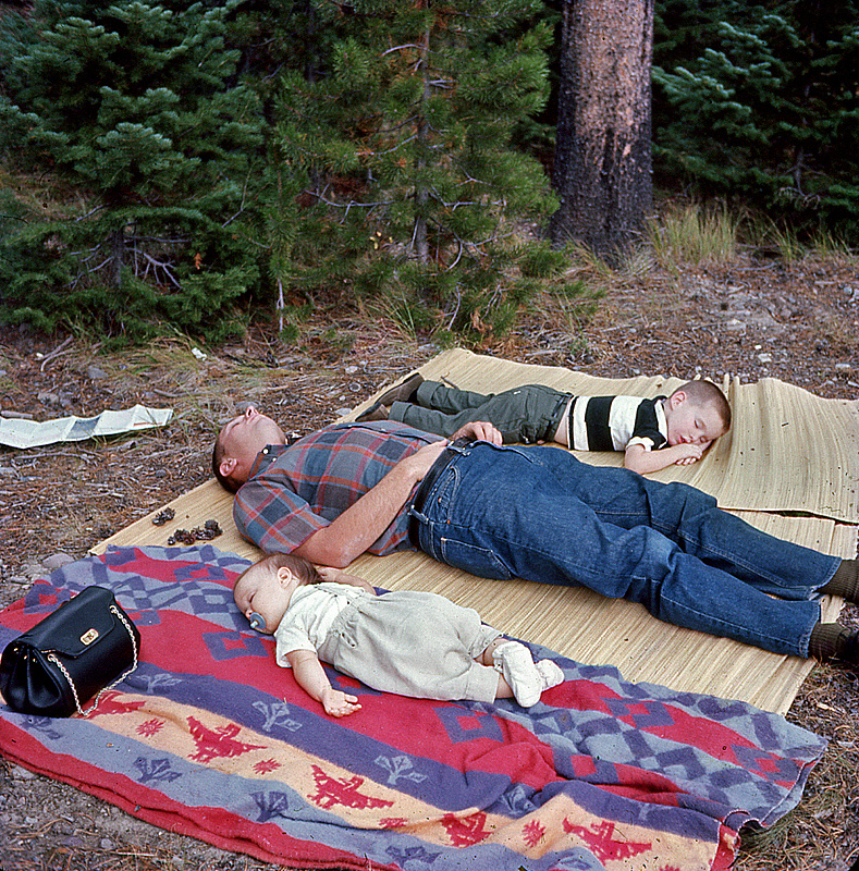 nap time in the rockies author siegel honolulu g gerry