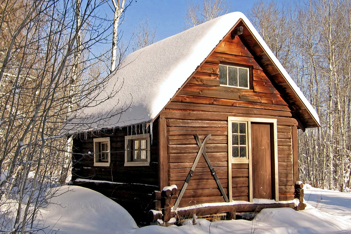 winter cottage in the woods author pluskwik paul