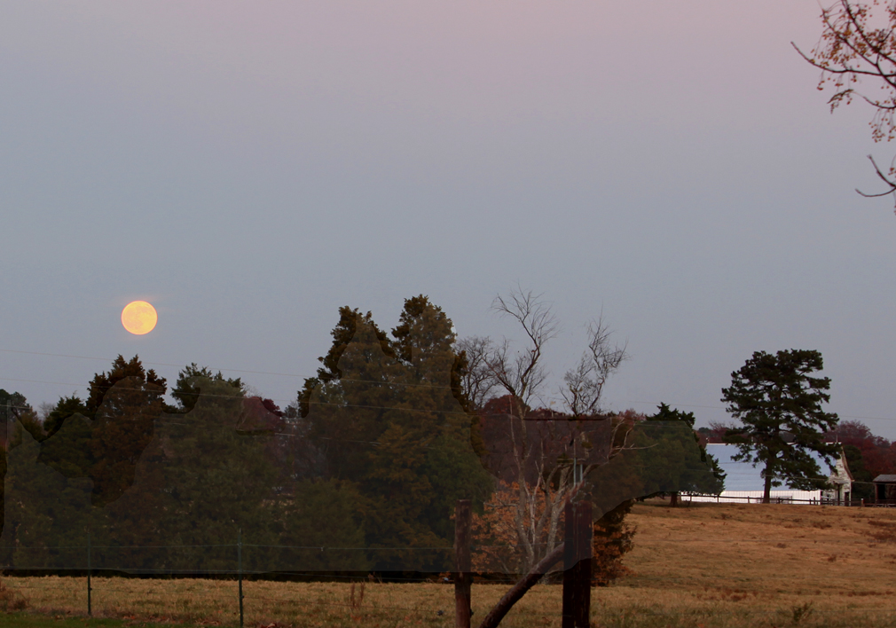 moon barn and meadow author kelly landrum
