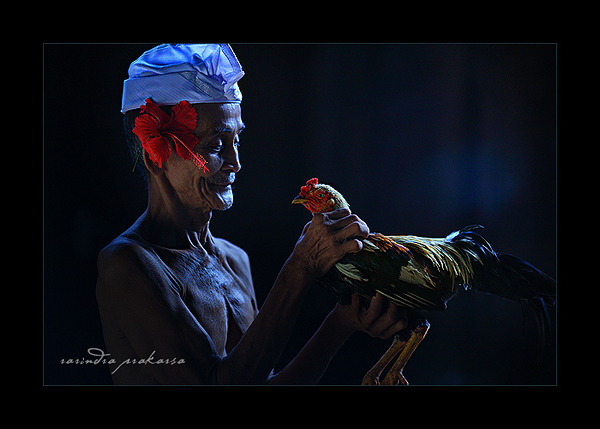 old man and his rooster author prakarsa rarindra