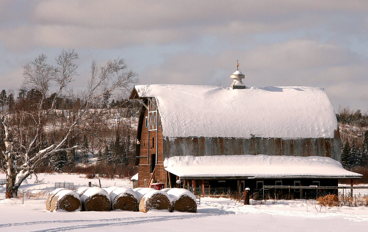 winter barn landscape author pluskwik paul