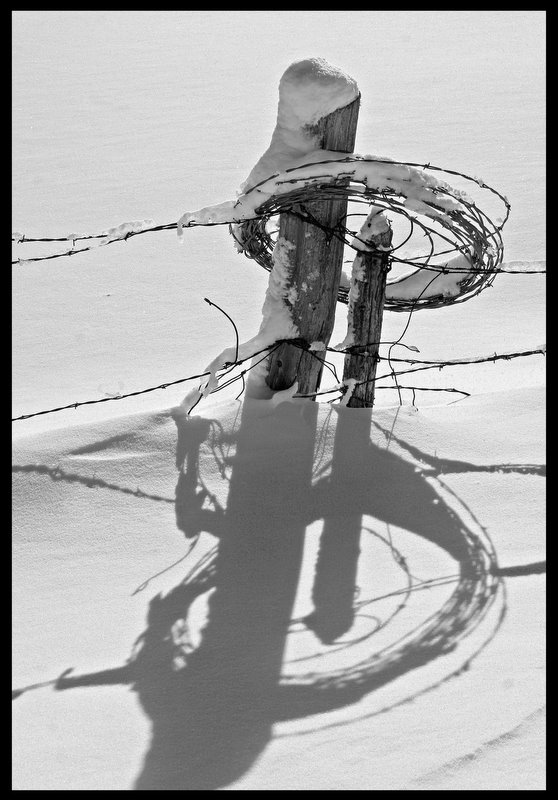 barbed wire on the fence post author pluskwik pau paul