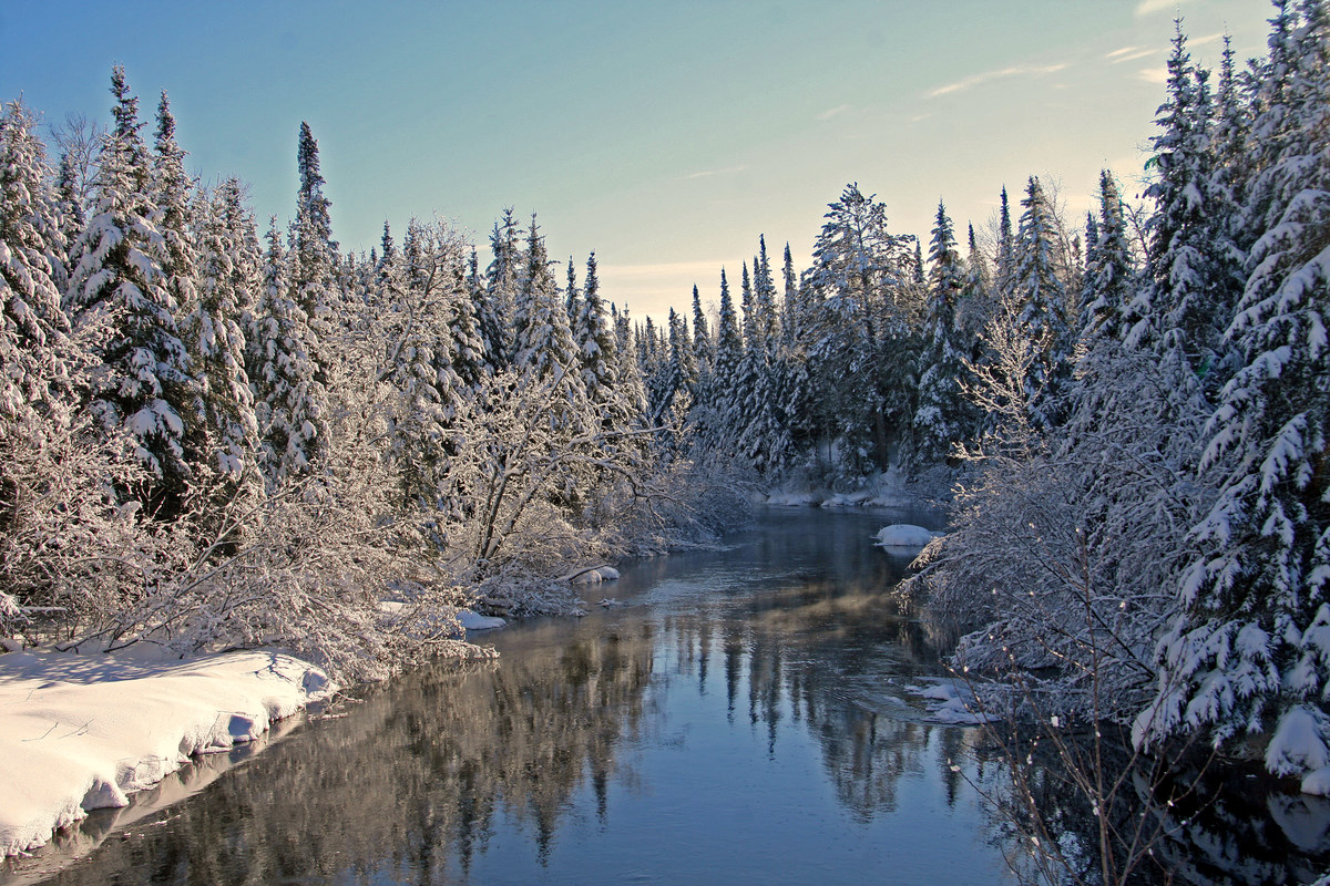 white face river the snow covered pines author pl pluskwik paul