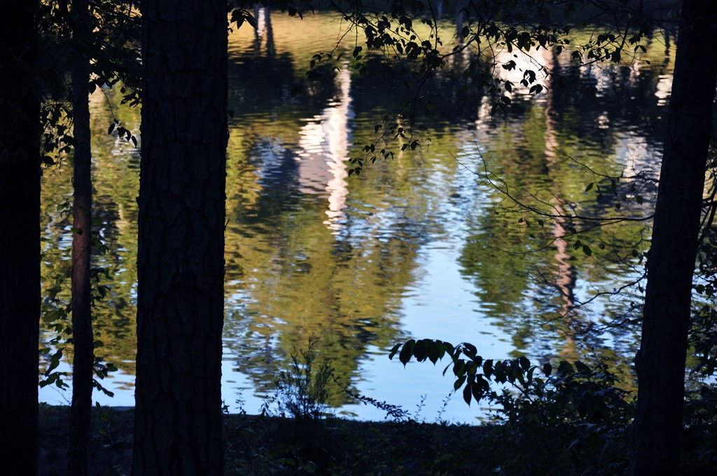ripples on an october afternoon hurley park autho kelly landrum