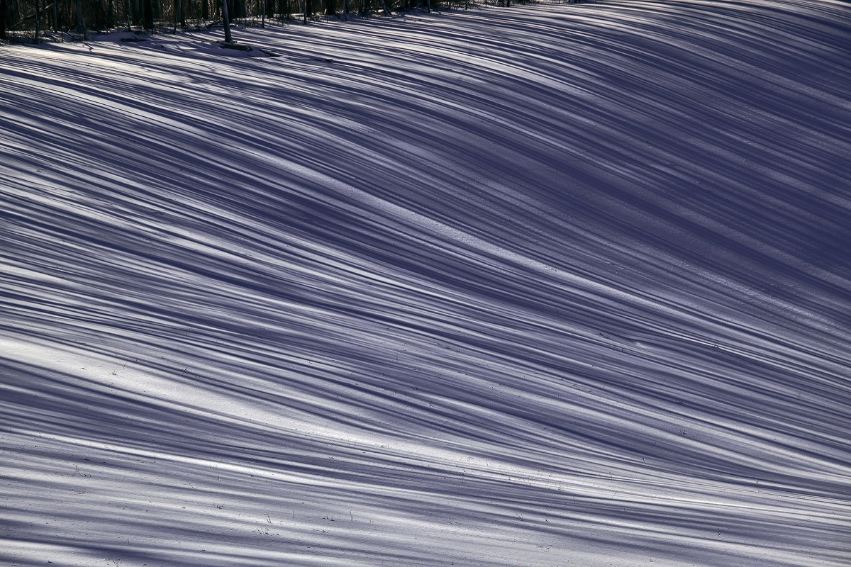 lines in snow img abw author sava gregory and ver verena
