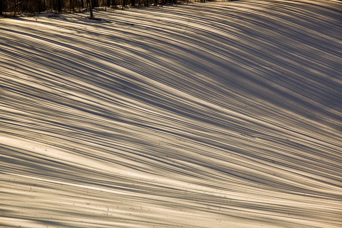 lines in snow img acrw author sava gregory and ve verena