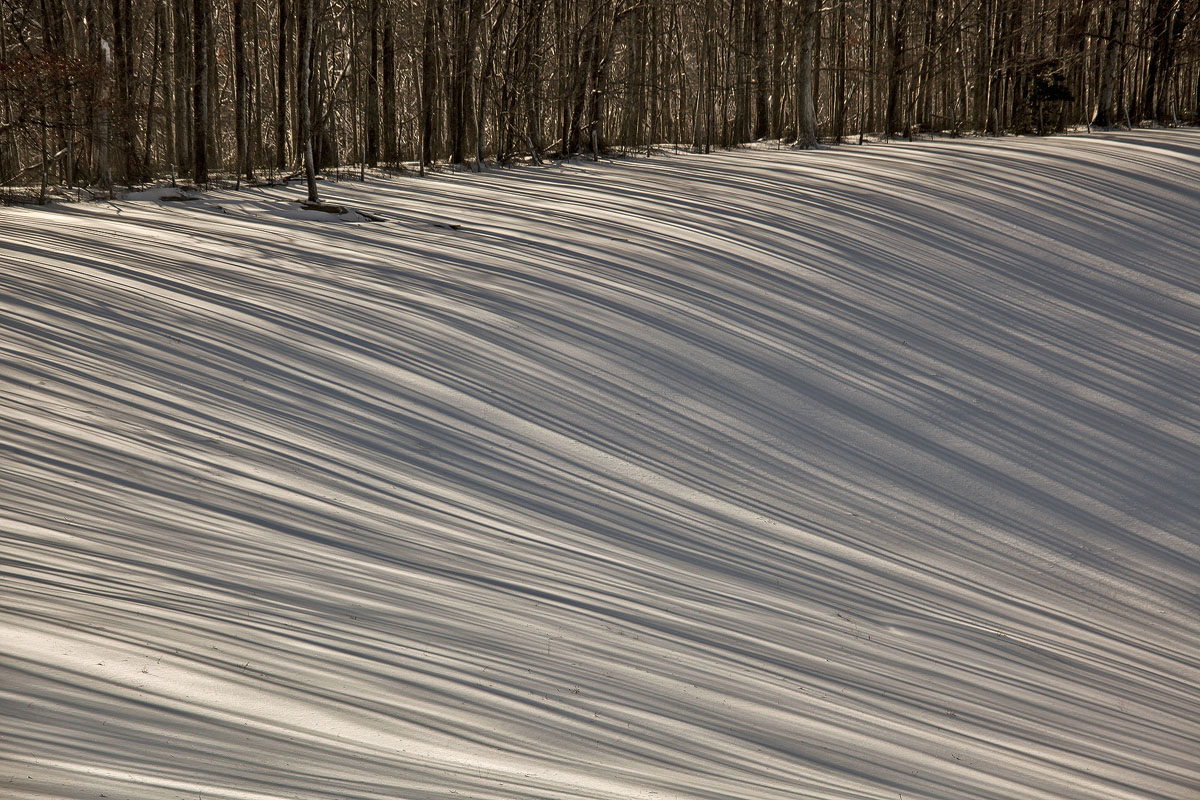lines in snow img craw author sava gregory and ve verena