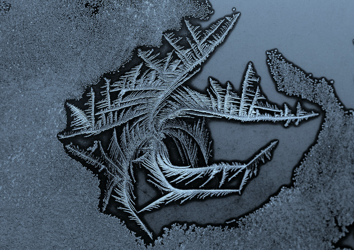 frost forming on the house window author pluskwik paul