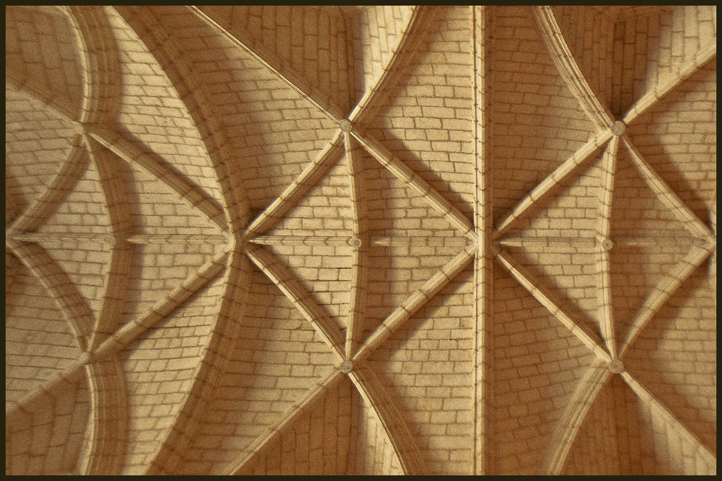 vaulted cathedral ceiling author downs jim
