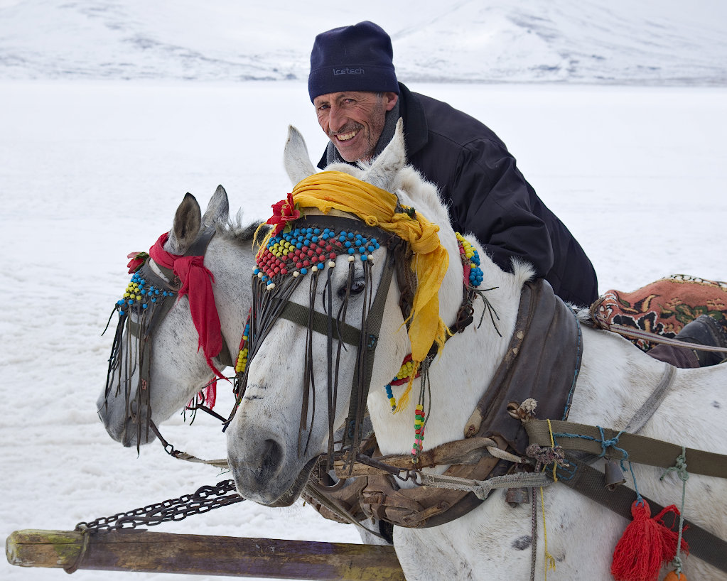 how about a ride on ice author celasun bulent