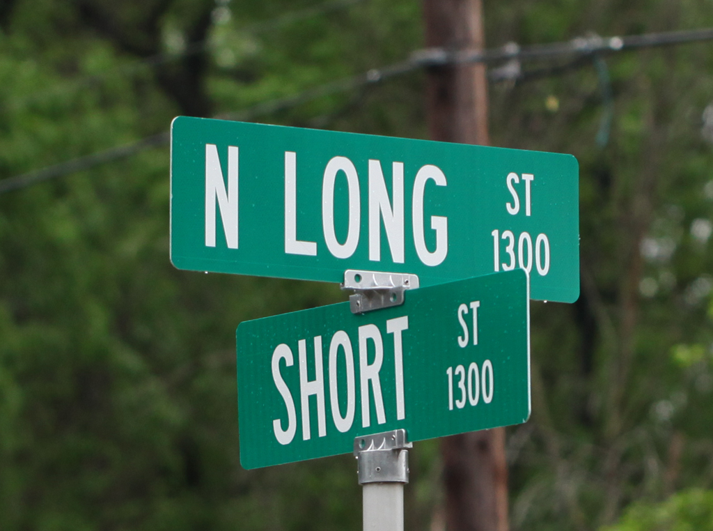 the long and short of it author kelly landrum
