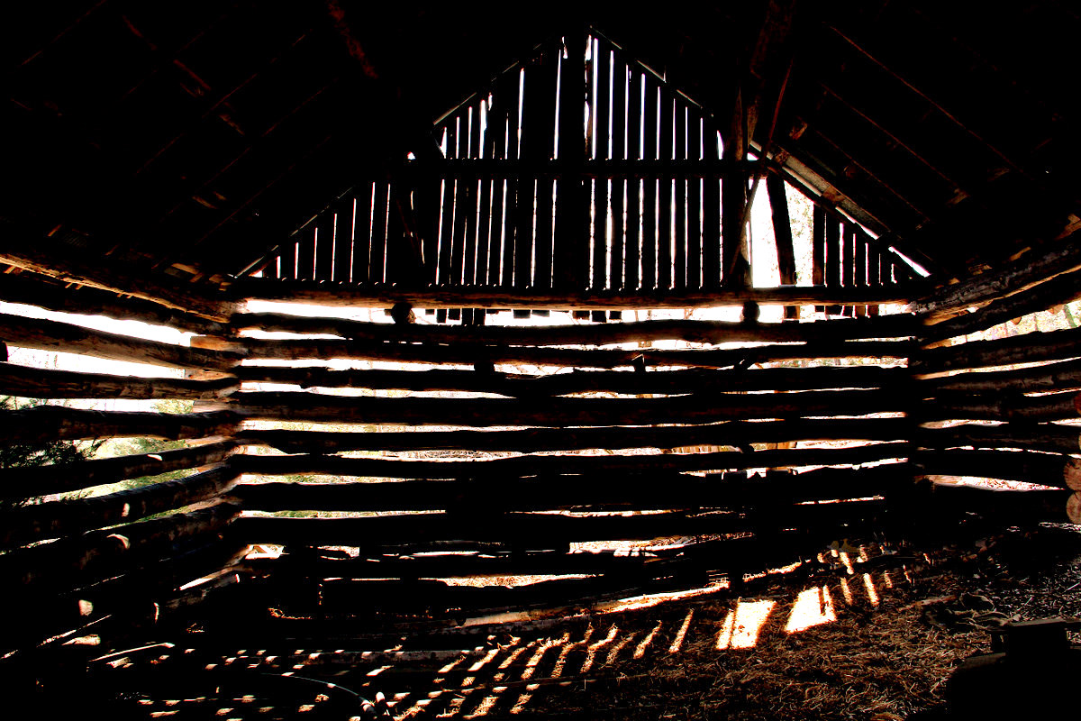 daylight coming in the old barn author pluskwik p paul