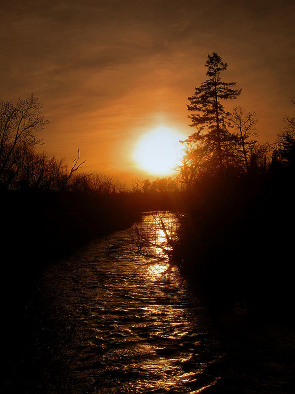 sunsetting down the river author pluskwik paul