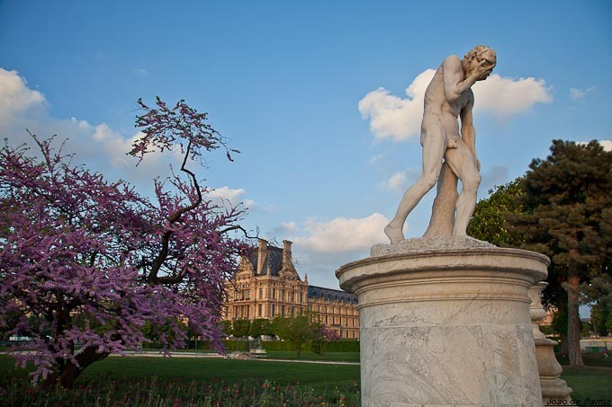 jardin des tuileries author barros joao