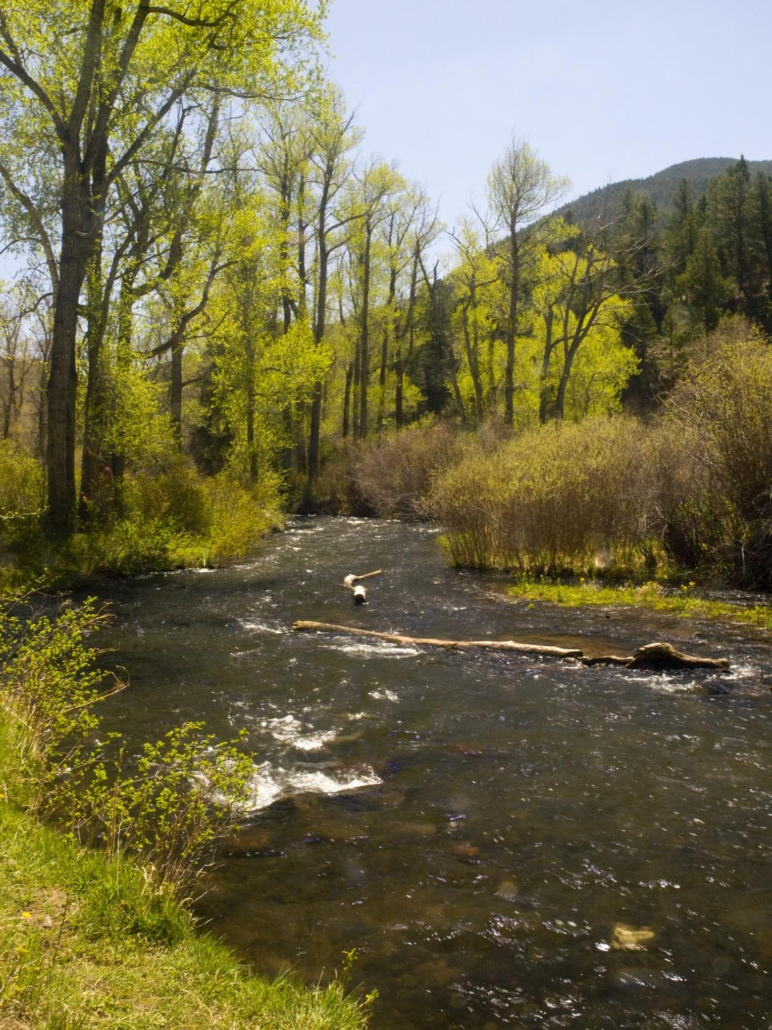 spring runoff outside taos author hull ray