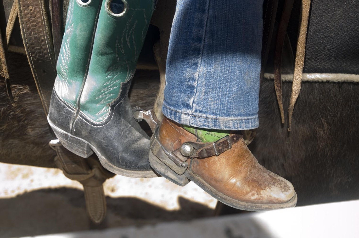 kids boots and saddle ex uu ranch author hull ray