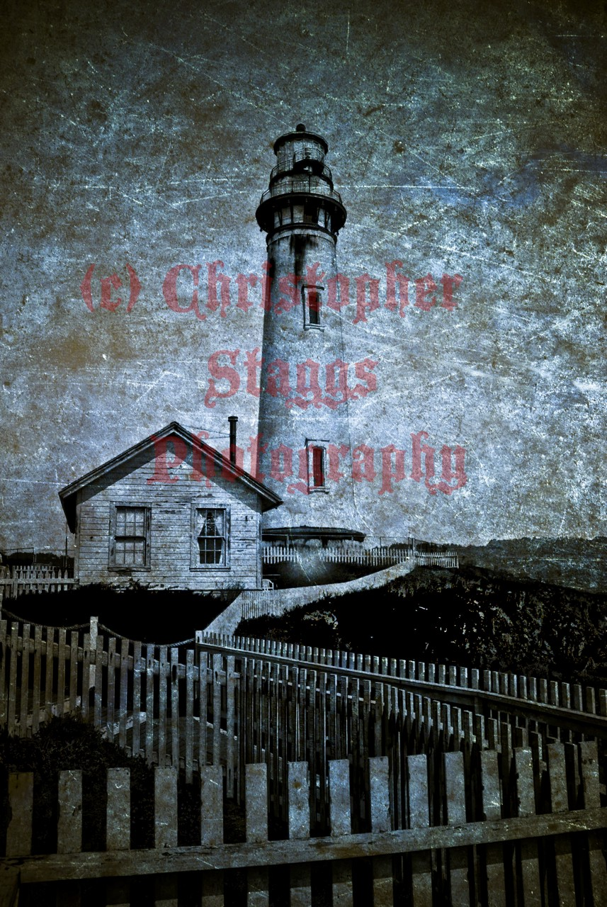 pigeon point author staggs christopher